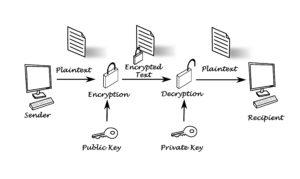Private Keys vs. Public Keys vs. Wallet Addresses
