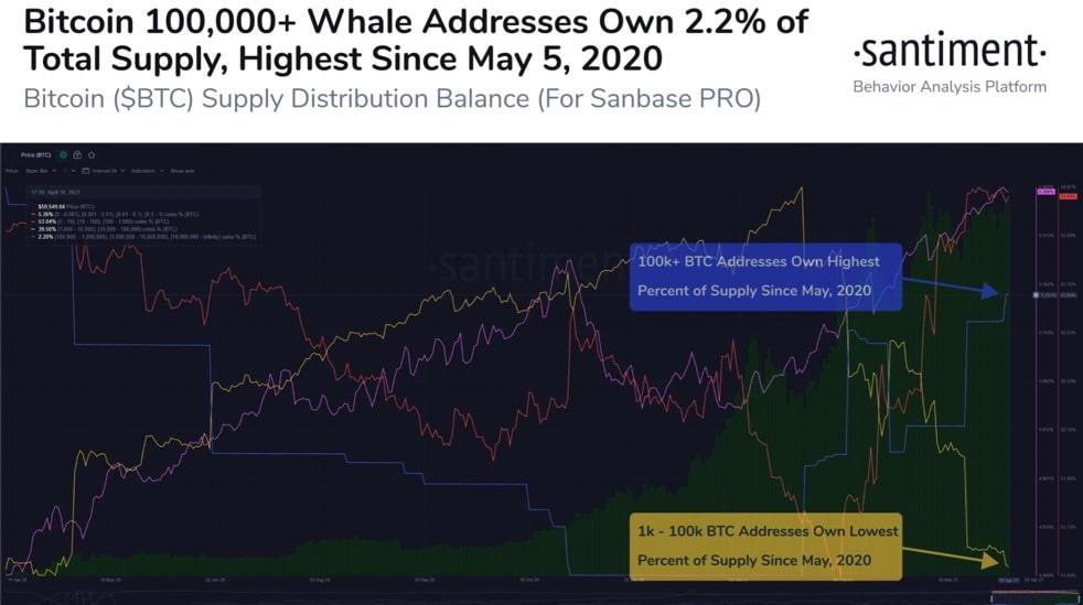 Bitcoin-BTC-Whale